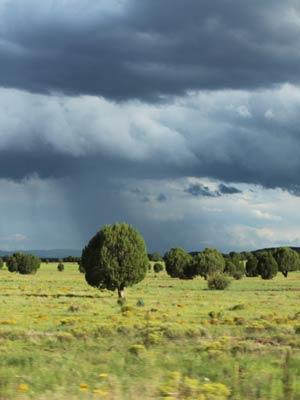 Door klimaatveranderingen gaat het in de toekomst vaker en harder regenen.